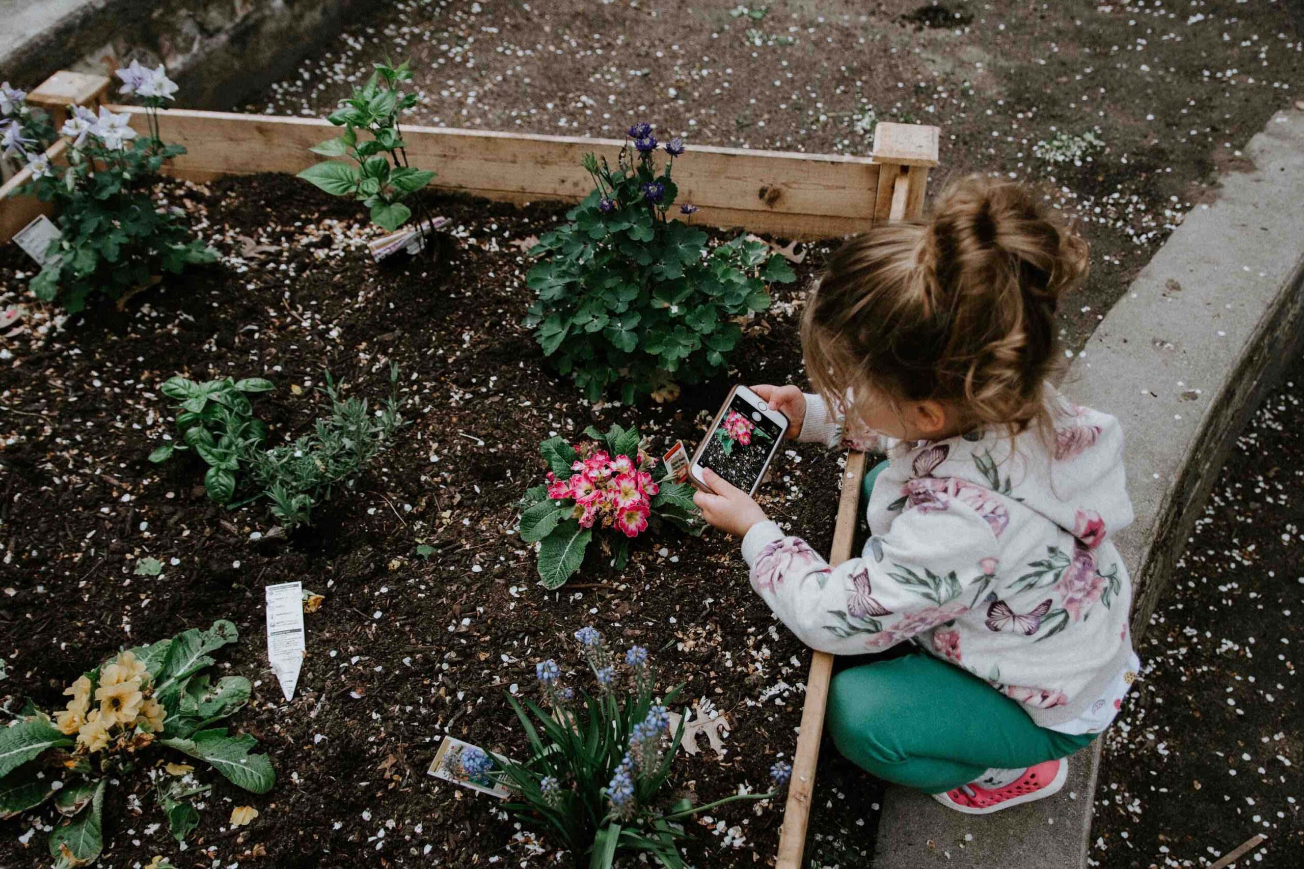 Gardening Activities for Kids and Toddlers